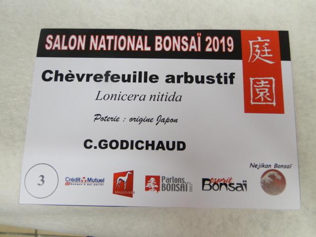 expo maulévrier 2019 - Page 6 Dsc08253
