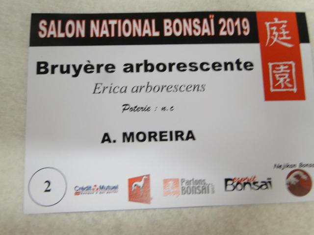 expo maulévrier 2019 - Page 6 Dsc08259