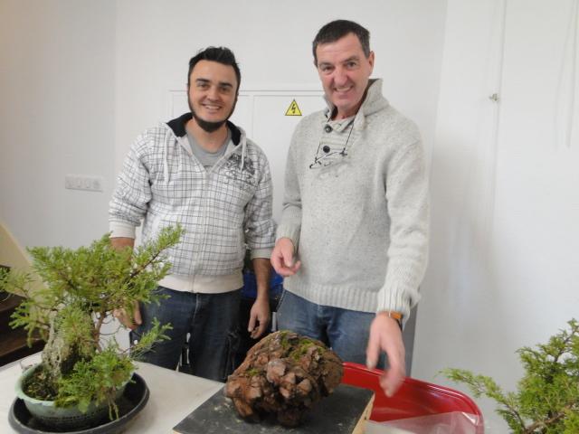 la passion du bonsai - Page 30 Dsc08570