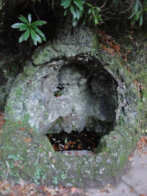 en forêt de Brocéliande Paimpont  - Page 2 Dsc09723
