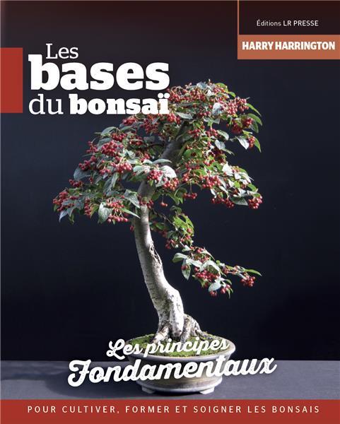 la passion du bonsai - Page 22 I-gran16