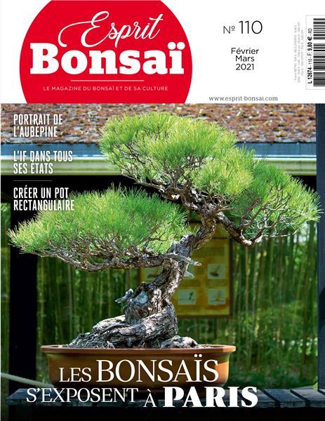 la passion du bonsai - Page 22 I-gran18