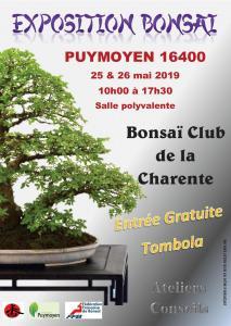la passion du bonsai - Page 14 Post-510