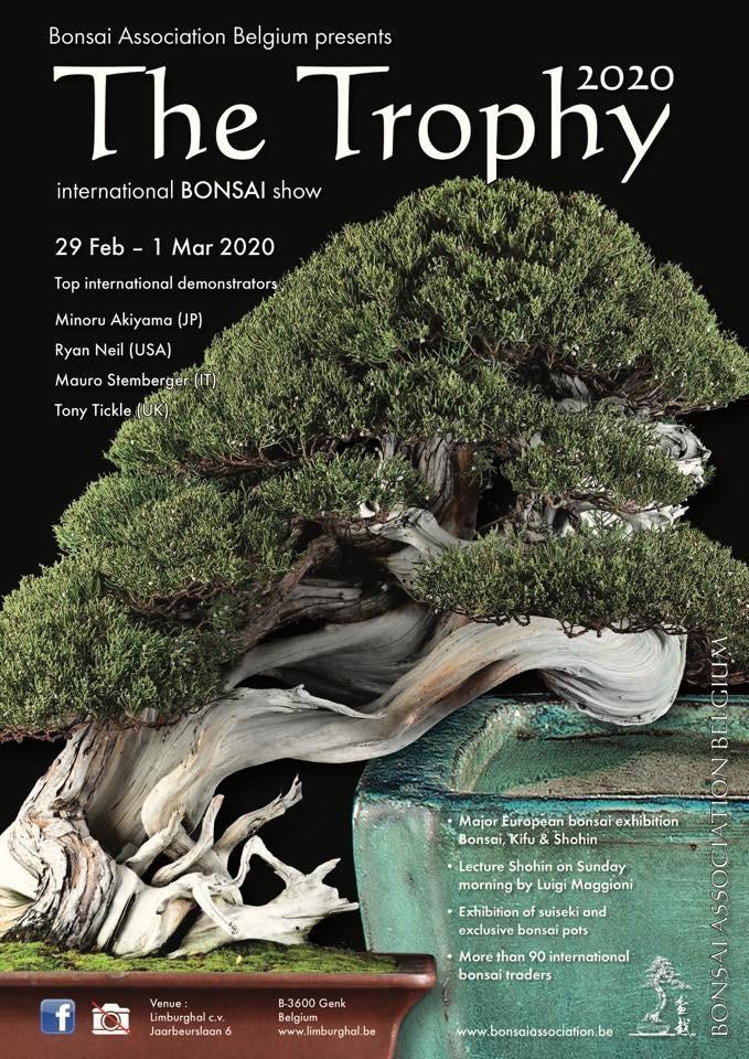 la passion du bonsai - Page 34 Trophy10