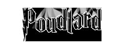 Billet de commande en codage Poudla10