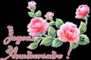 Joyeux anniversaire, Natou ! Gif_an12