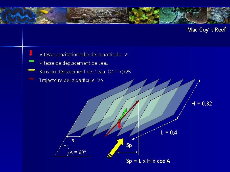 presentation du bac de christophe - Page 3 Img2611