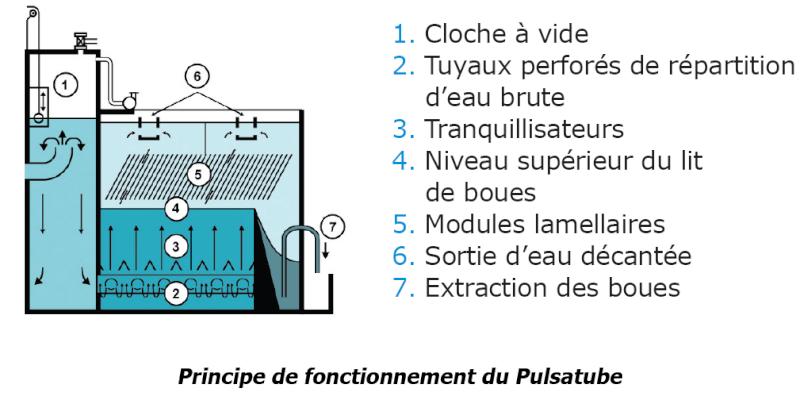 presentation du bac de christophe - Page 3 Pulsat10