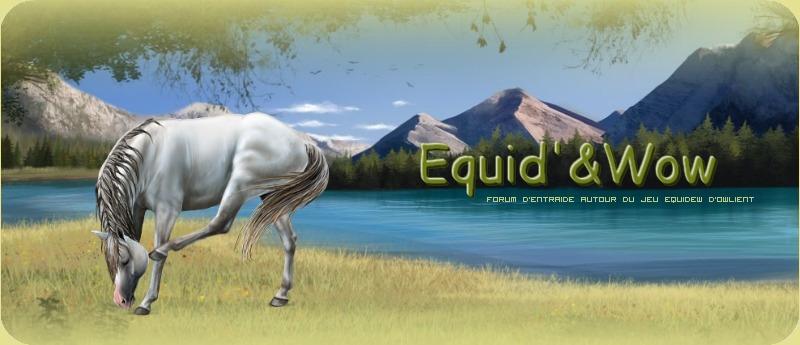 Equid' & Wow