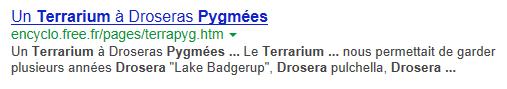 Pygmées Pygmae10