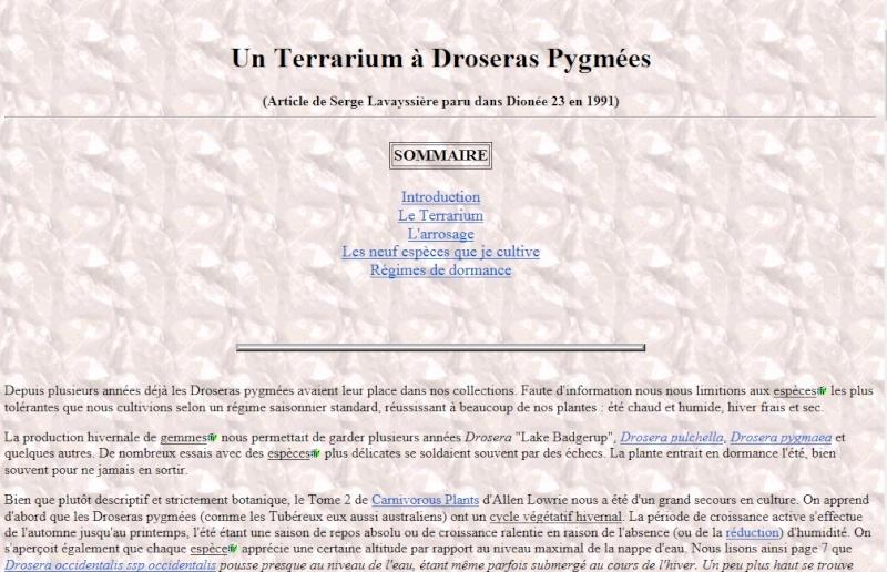 Pygmées Terra10