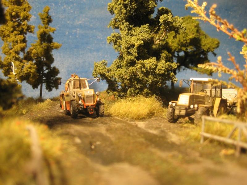 KFL-Hof und Landmaschinen von Lars - Seite 3 Dio_er39