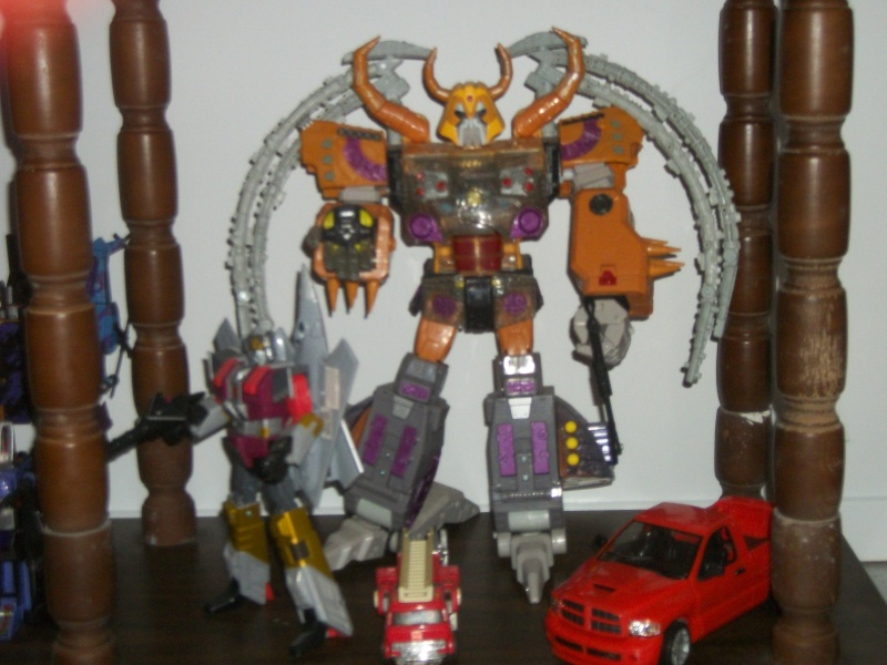 COLLECTION DE BRUTICUS 100_2530
