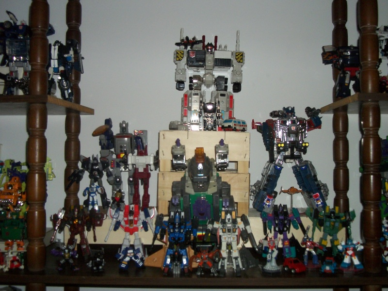 COLLECTION DE BRUTICUS 100_2532