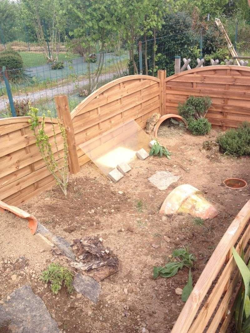déménagement et construction du nouvel enclos Photo_65