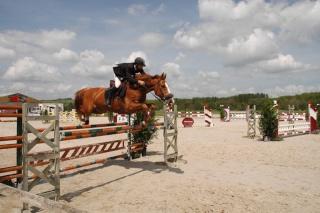 Challenge équitation