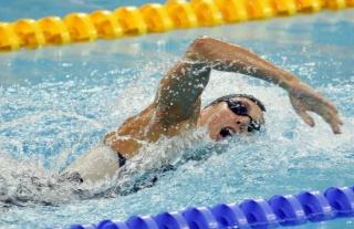Challenge natation, plongé sous marine,water polo