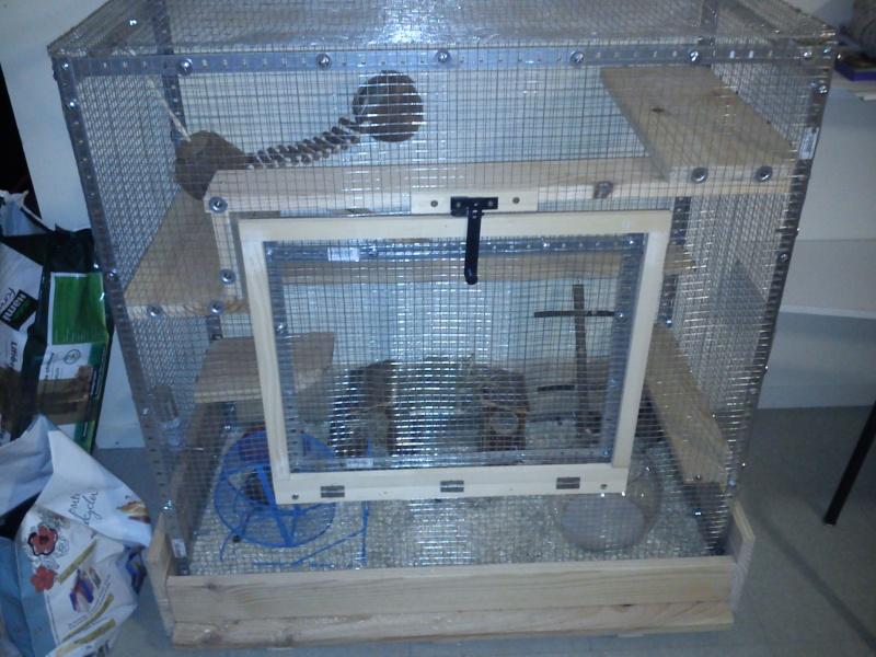Cage maison Dsc_0010