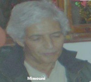 Ecole Ouled Mimoune مدرسة العلويين أولاد ميمون تفنيت سيدي بيبي - Portail El_mim10
