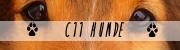 C11 Hunde Banner10