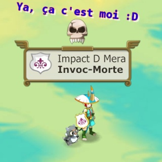 Invoc... Des invocs ???  Sans_t11