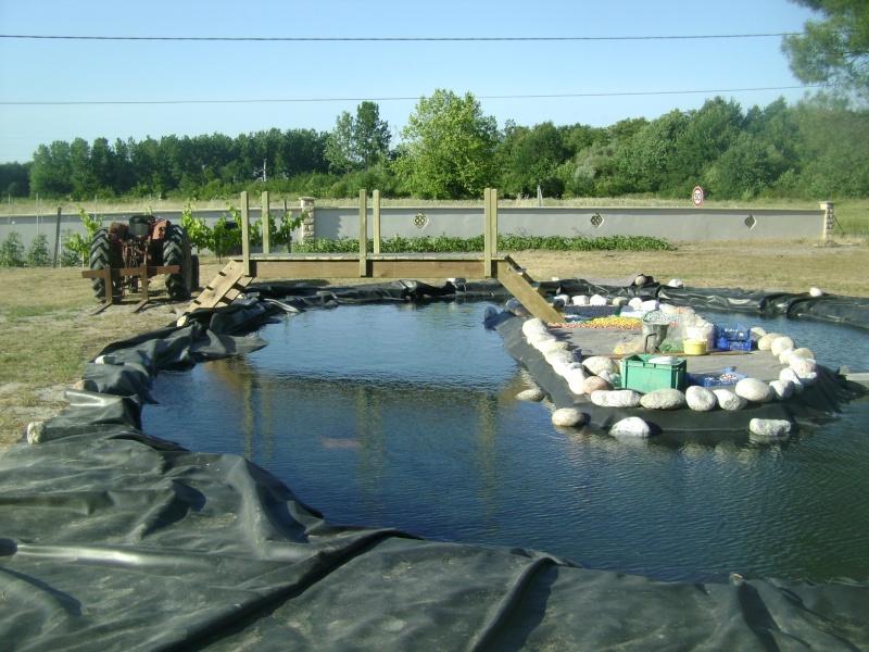 Bassin de Callette Dsc00920