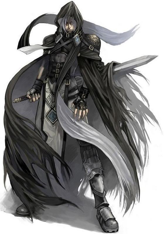 Gray Fox  Assass11