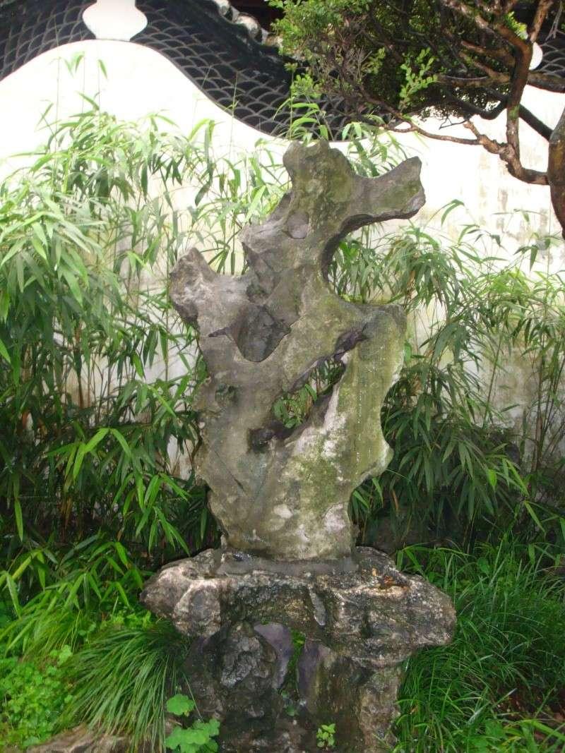 Sculptures naturelles ou œuvres de la nature - Page 4 Dsc02610