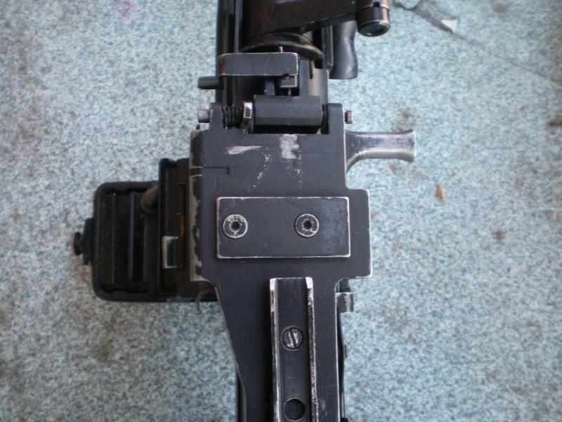L110A1 Custom  Ddzdd10