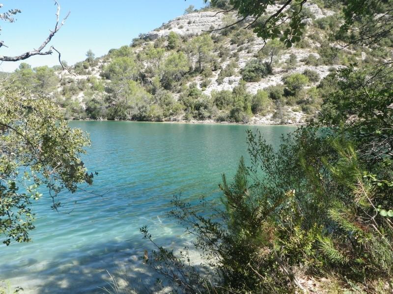 connaissez vous le lac d'esparron? Imgp0213