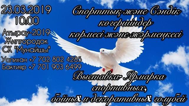 23 марта 2019 года в городе Атырау 125