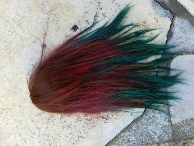 [vends] plusieurs wig 30€ fdp inclus Img_2021