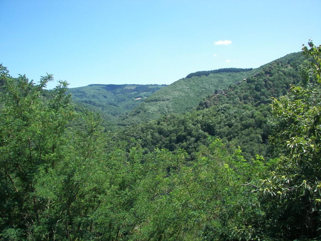 C.R. Occitanie - Journée Montagne Noire le 2 aout  100_9312