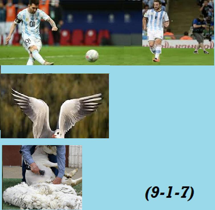 Avanzi di rebus - Pagina 44 Calcio10