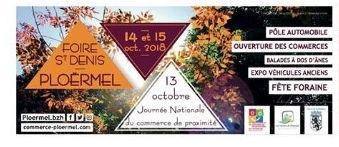 EXPO POUR LA FOIRE ST DENIS DIMANCHE 14 OCTOBRE 2018 PLACE DE LA POSTE 14_oct11