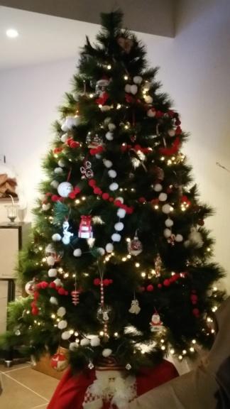 Père-Noël Surprise 2018 - Inscriptions closes - A vous de jouer ! - Page 40 20181248