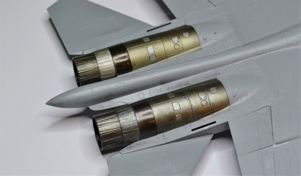 SU 33 FLANKER D RUSSIAN NAVY 1/72 Revell . Dsc_0385