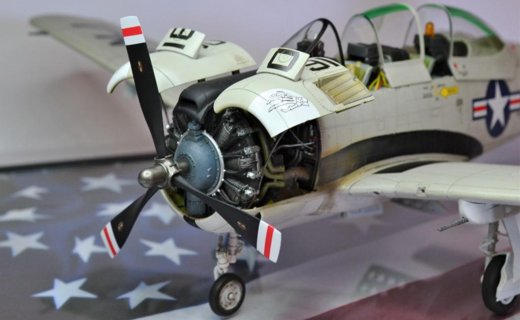 Trojant 28c Kitty Hawk 1/32 - Page 3 Dsc_0449