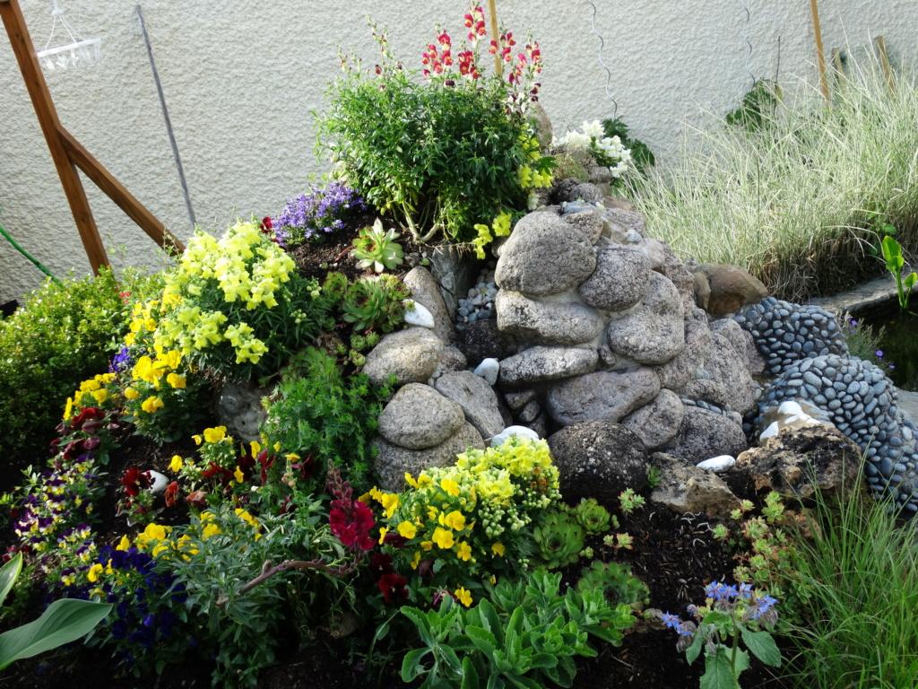 Le jardin de notre ami Sophat Dsc03062