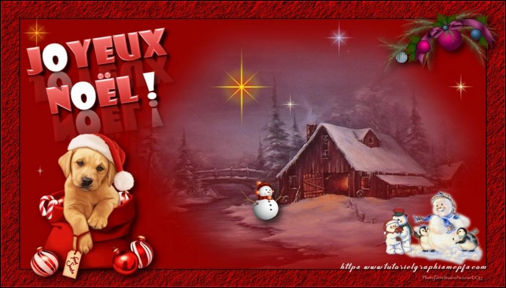 """Logo """"Fête """"Noël 2020 ►Servez vous 217"""