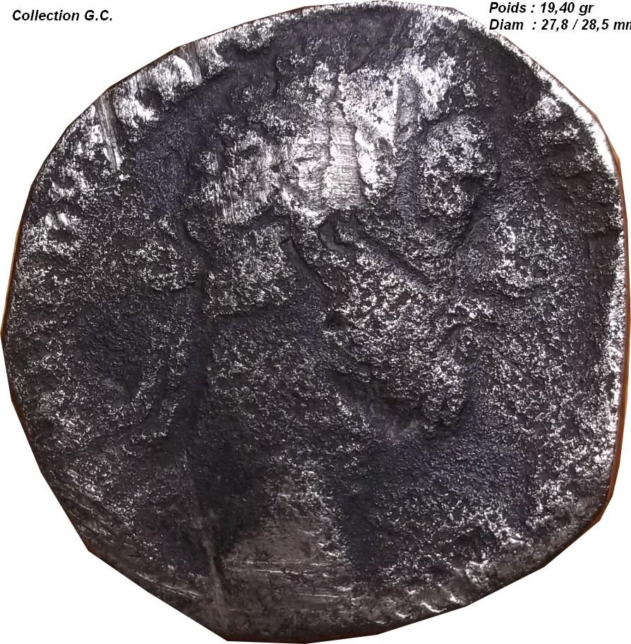 Identification Romaine D6_211
