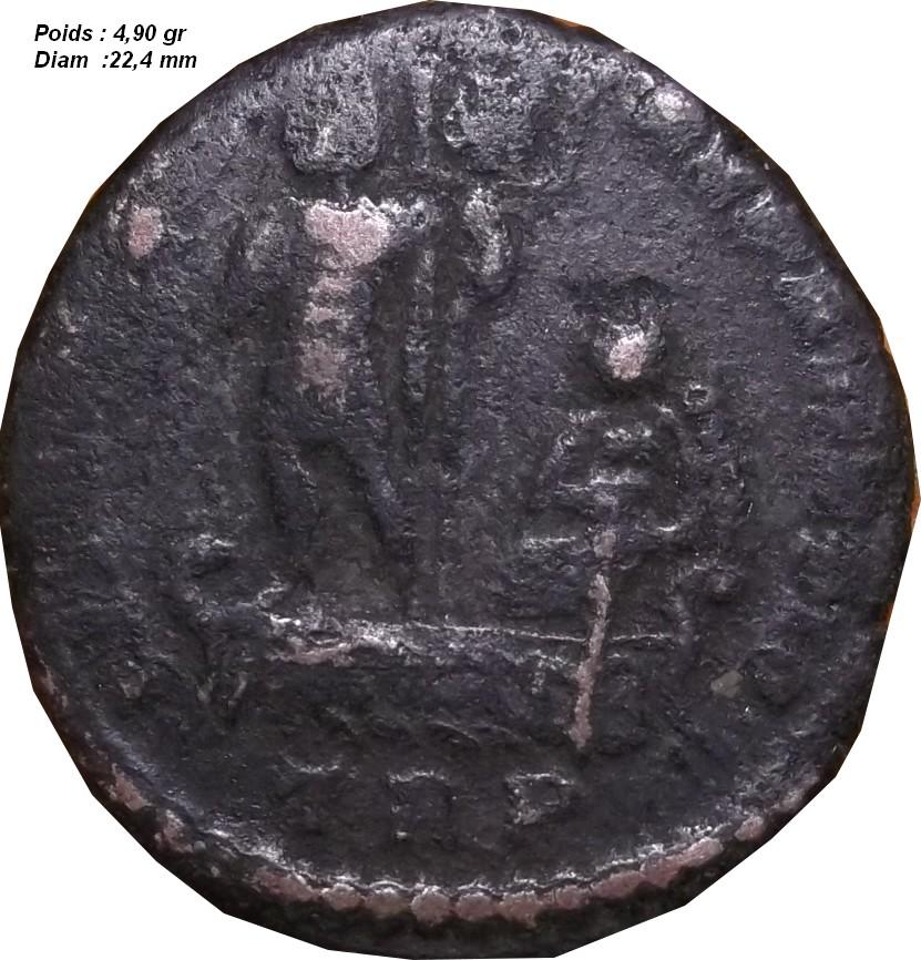 Identification Romaine ( Ae2 Centenionalis Constans ) G12_210