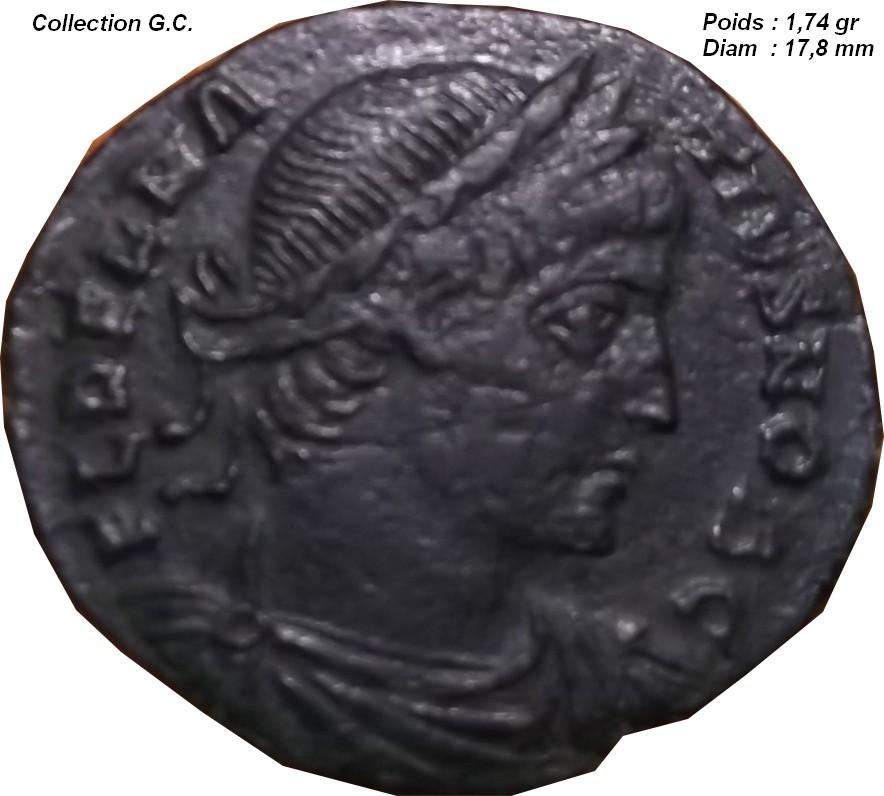 Identification Romaine (  Delmace ric 135 ) Ggg11