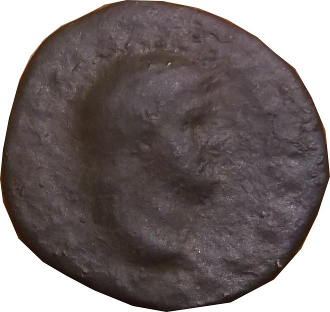 Identification Romaine  ( semis de Néron ) Vieill10