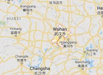 Todo comenzó acá... Y hoy está el mundo en cuarentena. Wuhan111