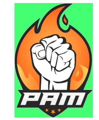 MOTORHOME EQUIPO PAM ESPORTS - PAM Pam10