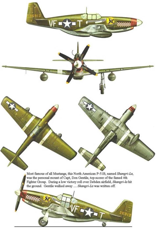 NORTH AMERICAN P-51 MUSTANG 30e41210