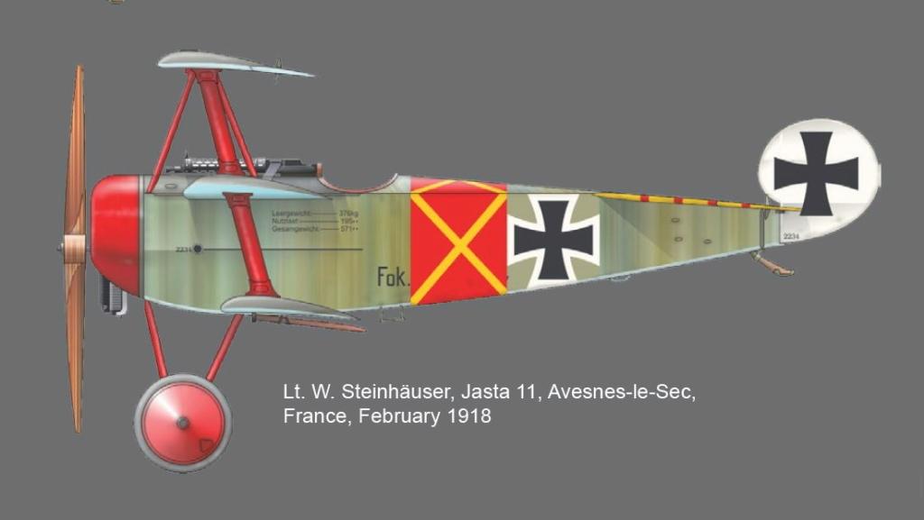 FOKKER Dr.I Fokker51