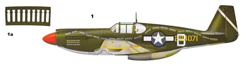 NORTH AMERICAN P-51 MUSTANG P-51-110