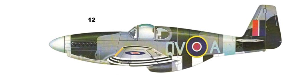 NORTH AMERICAN P-51 MUSTANG P-51-113